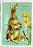 TAUSENDSCHÖN Fröhliche Ostern - Hase mit bunten Eiern + Narzissen Postkarte