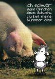 sheepworld Ich schwör beim Öhrchen dieses Schweins... Postkarte