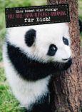 GOLDBEK Riesige Voll-doll-super-plüschige-Umarmung für Dich! Lichtblicke Postkarte
