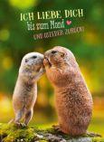 GOLDBEK Ich liebe Dich bis zum Mond und wieder zurück Lichtblicke Postkarte