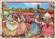 TAUSENDSCHÖN Tulpenfelder Holland Postkarte