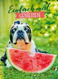 GOLDBEK Einfach mal geniessen / Hund mit Melone Lichtblicke Postkarte