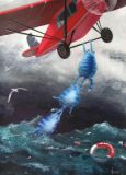 ACARDS Rettung mit Flugzeug - Irina Zeniuk Postkarte