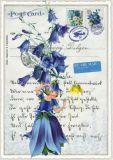 TAUSENDSCHÖN Blumenfee mit blauer Glockenblume Postcard Postkarte
