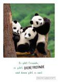 GWBI Es gibt Freunde, es gibt dicke Freunde und dann gibt es uns! - Classic Line Postkarte