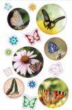 AVANsticker Schmetterlinge Fotos Sticker