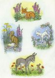 TAURUS-KUNSTKARTEN Reh, Otter, Lamm & Esel mit Hase - Molly Brett Postkarte