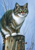 ACARDS Katze auf Pfosten - Irina Garmashova Postkarte