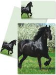 DFW Friese Pferd Briefmappe