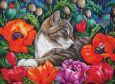 ACARDS Katze liegt in Mohnblumen - Irina Garmashova Postkarte