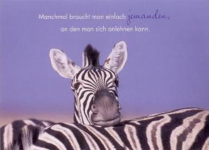 gwbi jemanden zum anlehnen zebras classic line postkarte. Black Bedroom Furniture Sets. Home Design Ideas