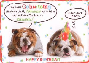 Hartung Edition Happy Birthday Zwei Hunde In Touch Postkarte