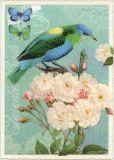 TAUSENDSCHÖN Blau/grüner Vogel auf weißen Blumen Postkarte