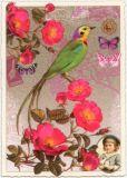 TAUSENDSCHÖN Sittich mit pinken Blüten Postkarte