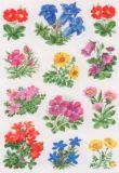 Herma Bergblumen Sticker