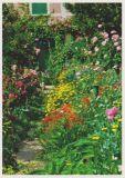 RANNENBERG Blumenrabatte in Monets Garten Postkarte