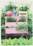 RANNENBERG Gartenkommode Postkarte