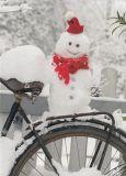 GOLLONG Schneemann auf Fahrrad - Martina Carmosino Postkarte