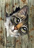 LOVELYCARDS Katze guckt durch Loch im Zaun - Irina Garmashova Postkarte