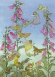 TAURUS-KUNSTKARTEN Feen und Fingerhut - Molly Brett Postkarte
