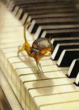 INKOGNITO Der Pianist / Kleine Katzenkunde - Editons Lacombe Postkarte