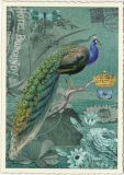 TAUSENDSCHÖN Pfau / Hotel Burgundy Postkarte