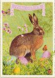 TAUSENDSCHÖN Frohe Ostern - Hase mit Ostereiern Postkarte