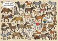 TAURUS-KUNSTKARTEN Welches Pferd genießt die Sonne? - Charis Bartsch Postkarte