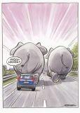 MT Arschlöcher!! / Elefanten auf Straße - Ralph Ruthe Postkarte