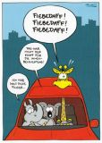 MT Fiebedaff!! / Giraffe, Nashorn & Koala im Auto - Ralph Ruthe Postkarte