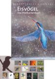 RANNENBERG Eisvögel Postkartenbuch