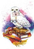 LOVELYCARDS Eule auf Büchern -  Jyldyz Bekova Postkarte