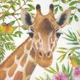GOLLONG Giraffe - Carola Pabst Postkarte
