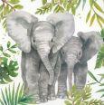 GOLLONG Elefanten - Carola Pabst Postkarte