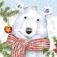 GOLLONG Eisbär an Weihnachten - Carola Pabst Postkarte
