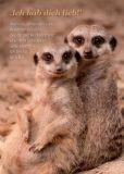 GWBI Ich hab dich lieb - Erdmännchen - blickfänge Postkarte