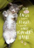 GWBI Manche Engel haben Schnurrhaare / Katze - Classic Line Postkarte