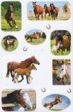 AVANsticker horse photos stickers