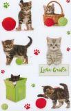AVANsticker Katzen + Pfotenabdrücke Sticker