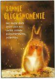 GWBI Sammle Glücksmomente / Eichhörnchen - Classic Line Postkarte
