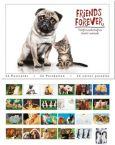 TUSHITA Friends Forever Postkartenbuch