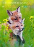 GOLDBEK Du bist das Größste für mich / two foxes Lichtblicke postcard