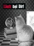 GOLDBEK Läuft bei Dir! / Katze mit Tiger im Spiegel Hangover Postkarte