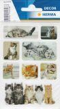 Herma Katzenkinder Fotos Sticker