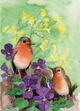 FLORIS Zwei Rotkehlchen mit lila Blüten Klappkarte m. Umschlag
