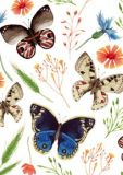FLORIS Schmetterlinge + Blüten Klappkarte m. Umschlag