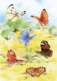FLORIS Sechs bunte Schmetterlinge Klappkarte m. Umschlag