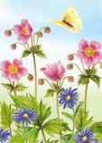 FLORIS Pinke Anemonen + gelber Schmetterling Klappkarte m. Umschlag