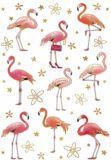 QUIRE Flamingos Postkarte