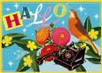 ALLTAGSPARADIES Hallo Postkarte